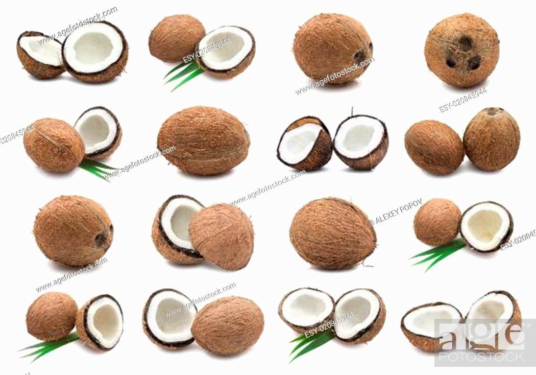 Stock Photo: Coconuts.