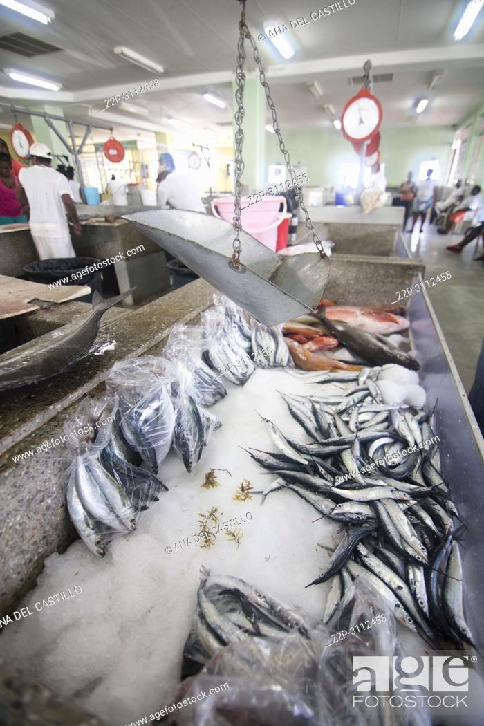Photo de stock: Fish market in Kingstown Saint Vincent and the Grenadines Caribbean sea on December 8, 2017. Bank of St Vincent.
