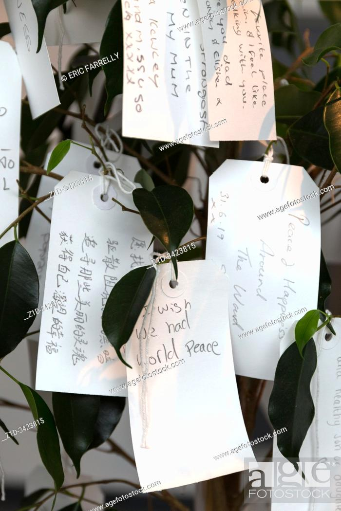 Imagen: Wish tree for Liverpool. Yoko Ono. Liverpool Museum pierhead Liverpool waterfront. Enngland.