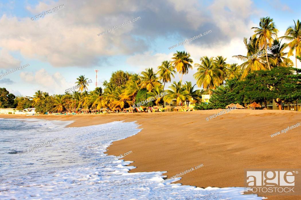 Stock Photo: Turtle Beach, Tobago.