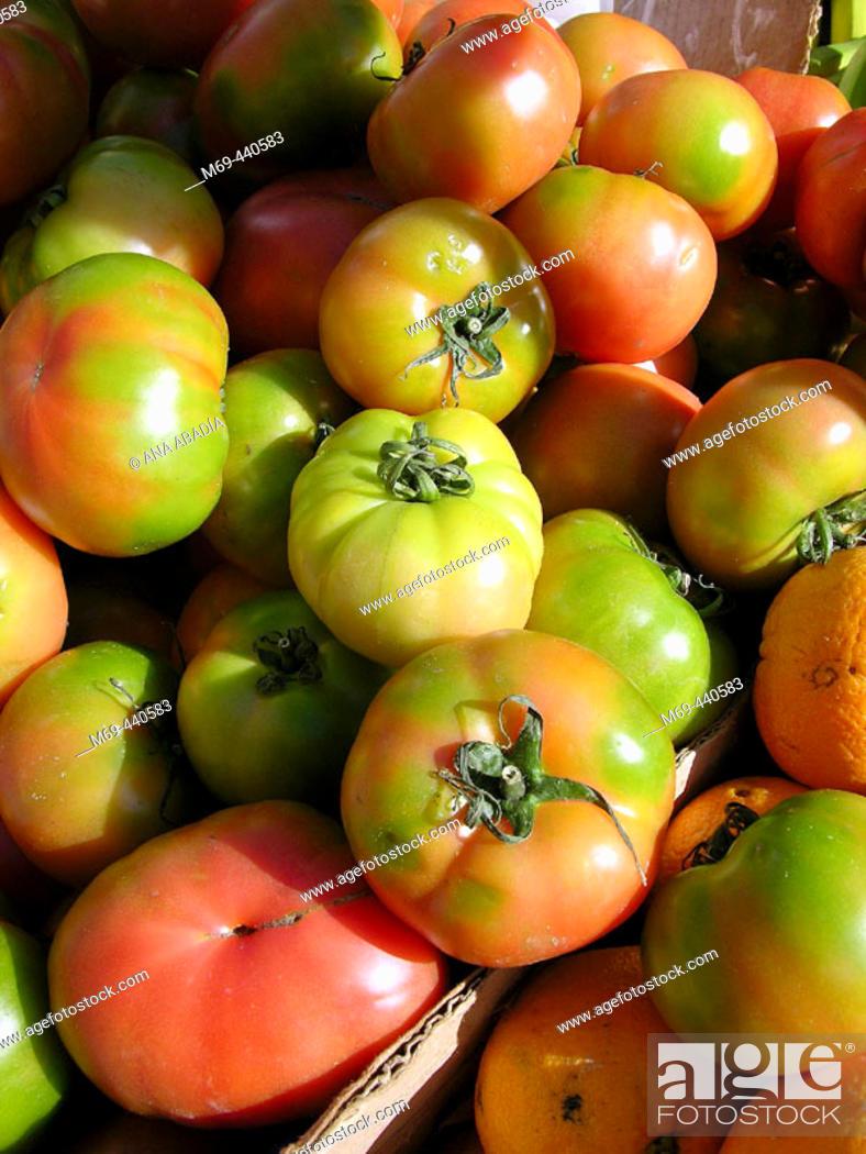 Stock Photo: Tomatoes for sale in market. Camprodon. Girona province, Catalonia. Spain.