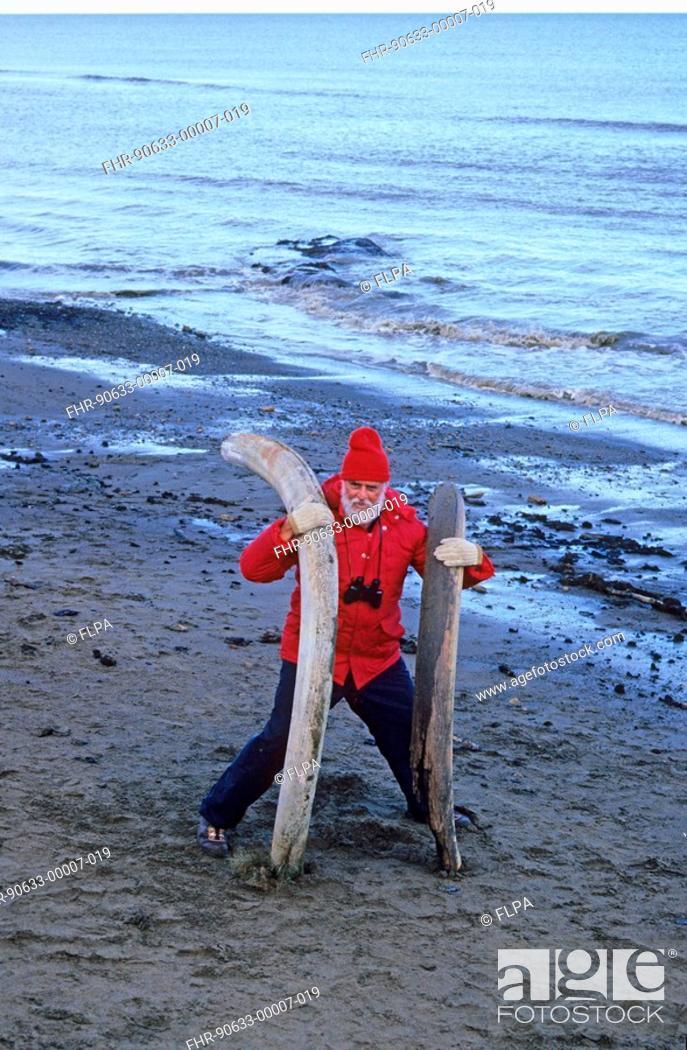 Prehistoric Animals - Man holding mammoth tusks on beach