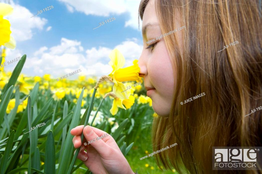 Stock Photo: Young girl smelling yellow daffodil.