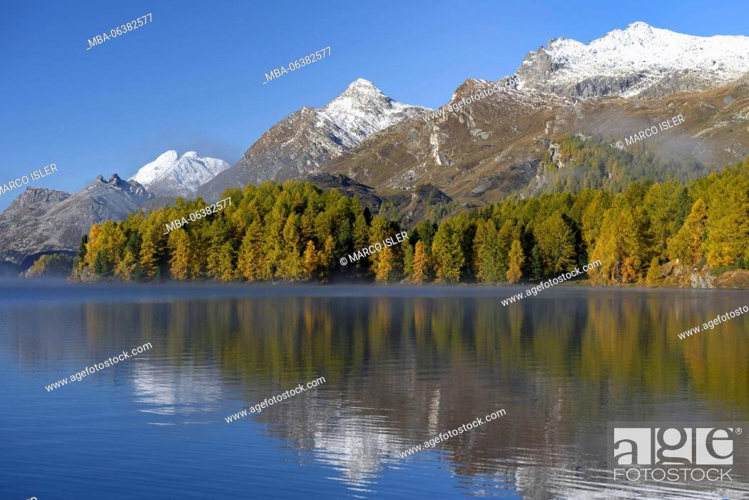 Stock Photo: Autumn at the Silsersee, Switzerland, Canton of Grisons, the Engadine.