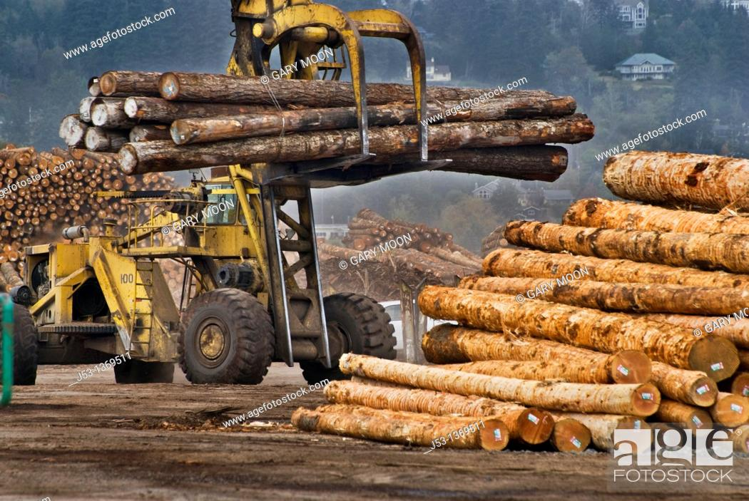Stock Photo: Massive logging machine moving softwood logs at lumber mill, Coos Bay Oregon.