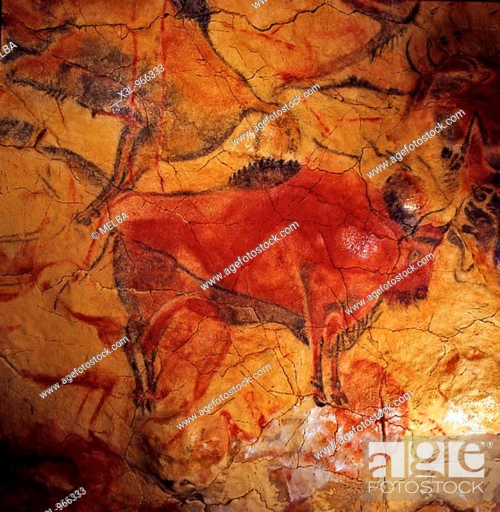 Stock Photo: Bison  Painting of the Altamira cave  Santander  Cantabria Spain.