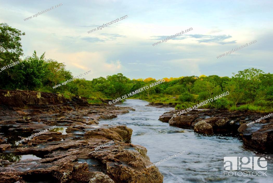 Imagen: Caño Los Pozos, Boyaca, Puerto Boyaca, Colombia.