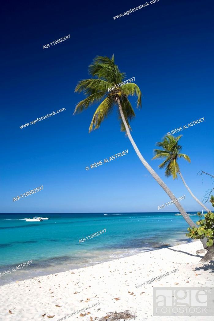 Stock Photo: Dominican Republic - East Coast - Bayahibe.