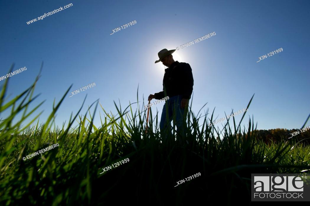 Stock Photo: Farmer in the field.