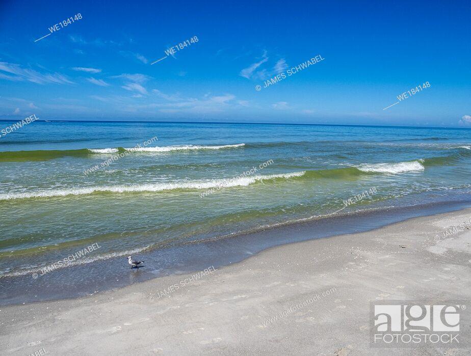 Imagen: Gulf of Mexico beach on Longboat Key Florida.