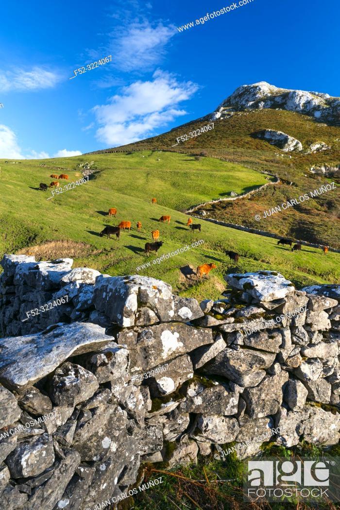 Stock Photo: Landscape in Astrana, Soba Valley, Valles Pasiegos, Cantabria, Spain, Europe.
