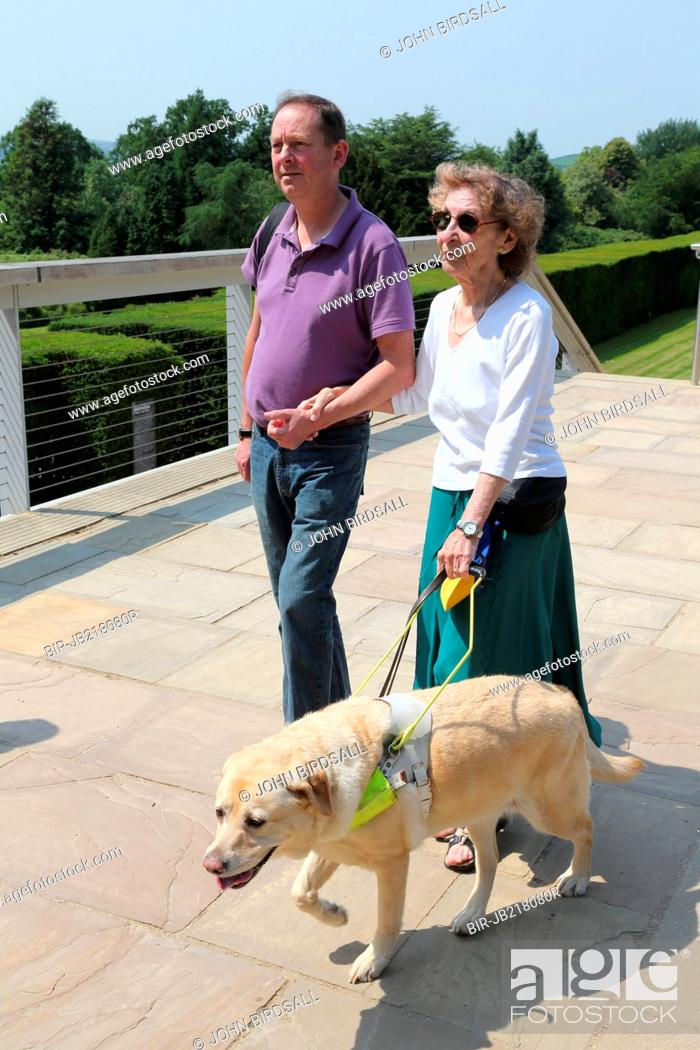 Imagen: Woman with visual impairments with helper and guide dog in grounds of the Yorkshire Sculpture Park.