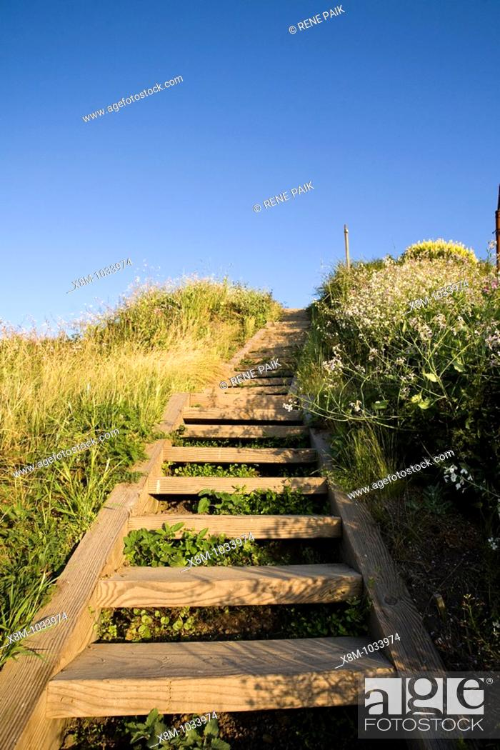 Stock Photo: A portion of the over 1000 steps at the Batteries to Bluffs Trail at the Historic Presidio in San Francisco, California, USA.
