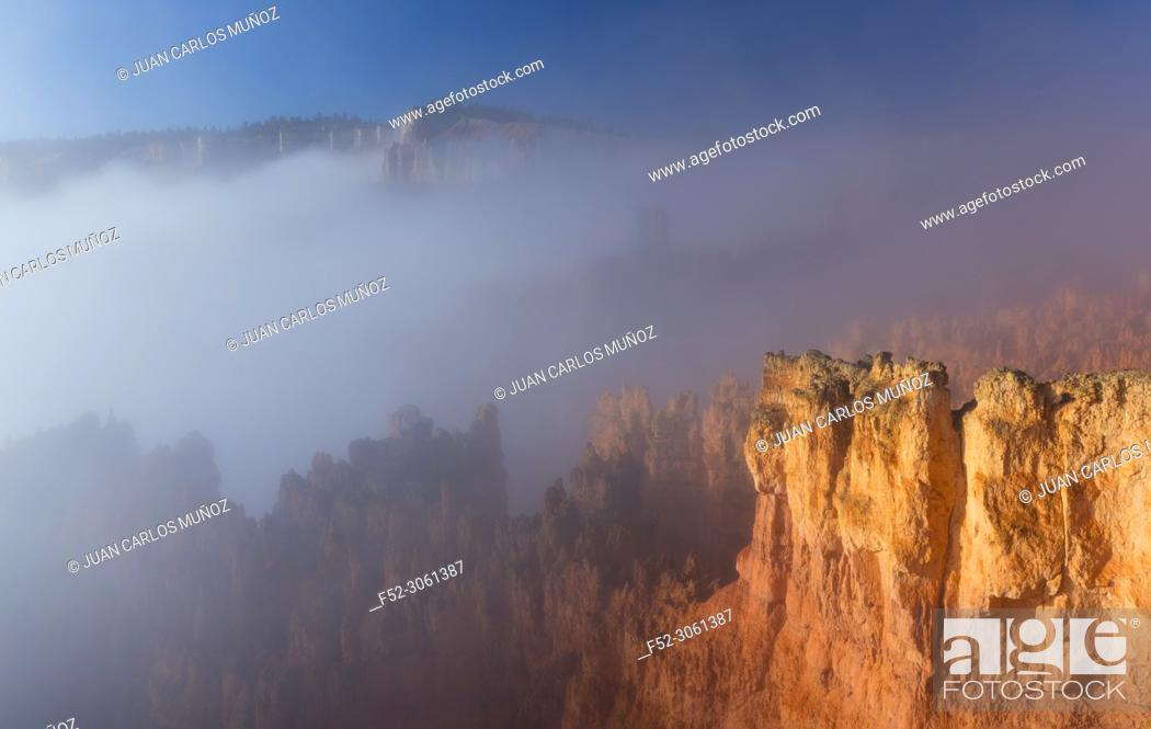 Stock Photo: Fog in Bryce Canyon National Park, Utah, Usa, America.