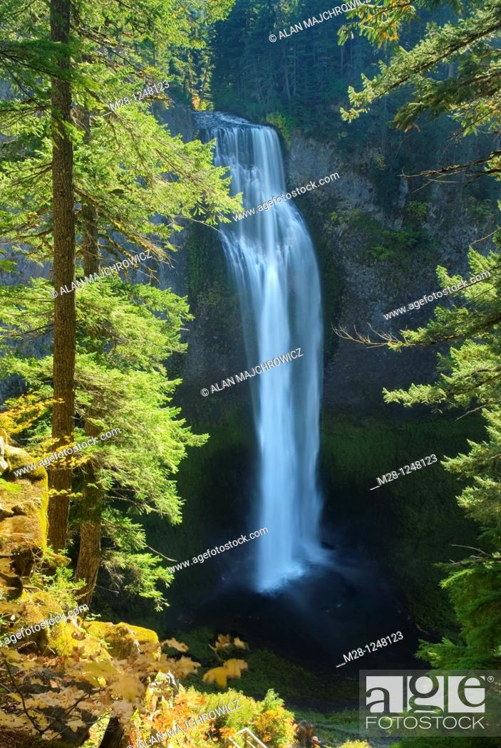 Stock Photo: Salt Creek Falls, Willamette National Forest Oregon.