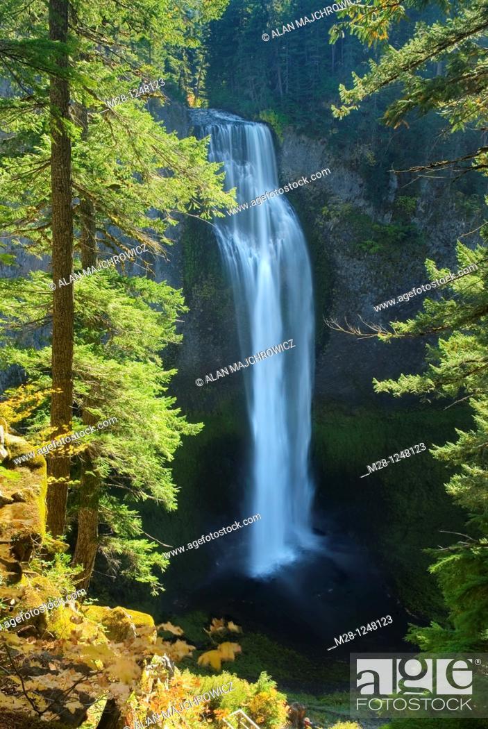 Stock Photo: Salt Creek Falls, Willamette National Forest Oregon.