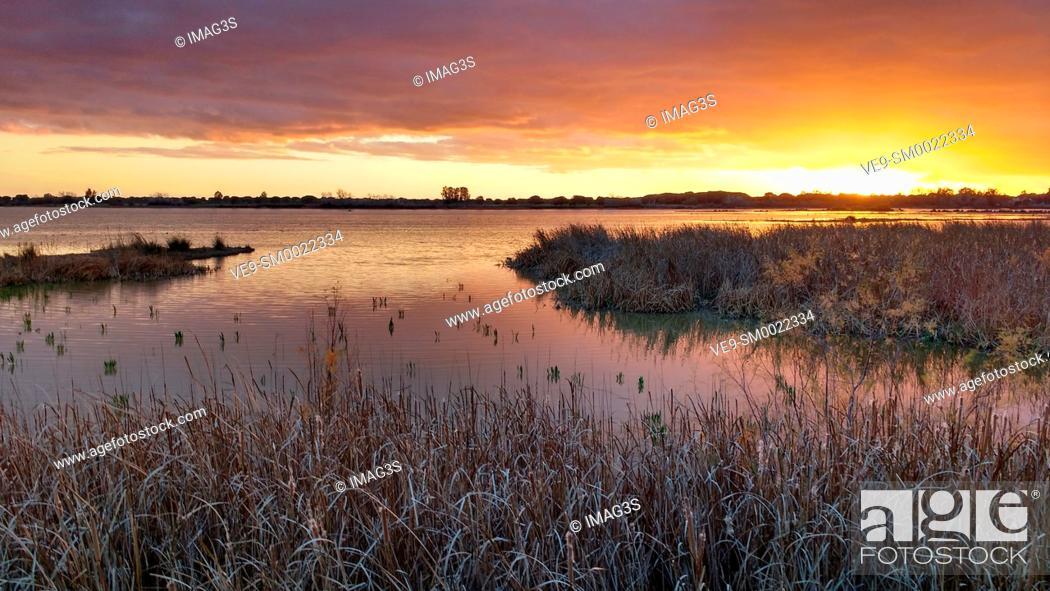 Imagen: Marsh Madre de las Marismas de El Rocío, Doñana National Park, Almonte, Huelva province, Spain.