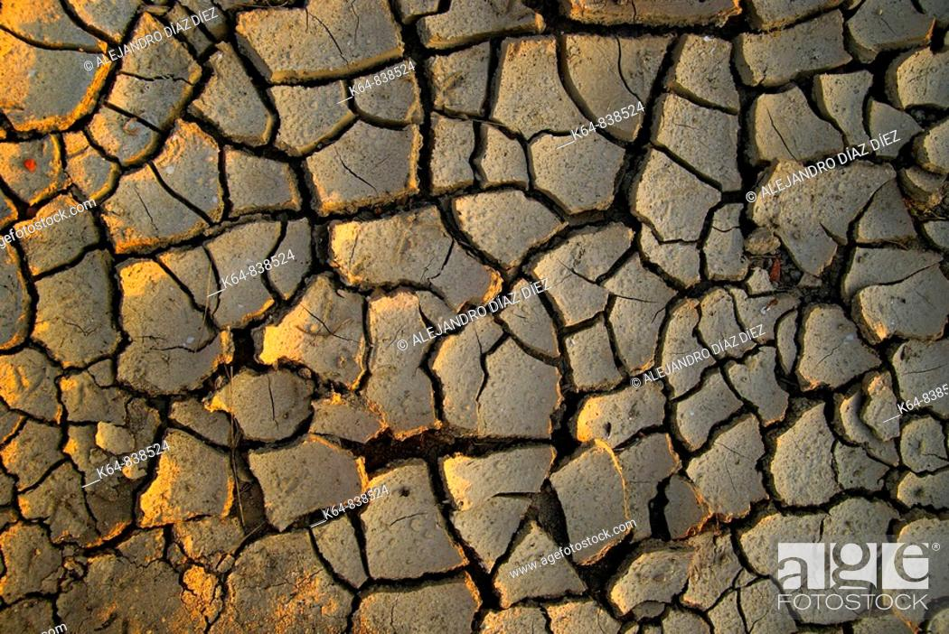 Stock Photo: Drought.