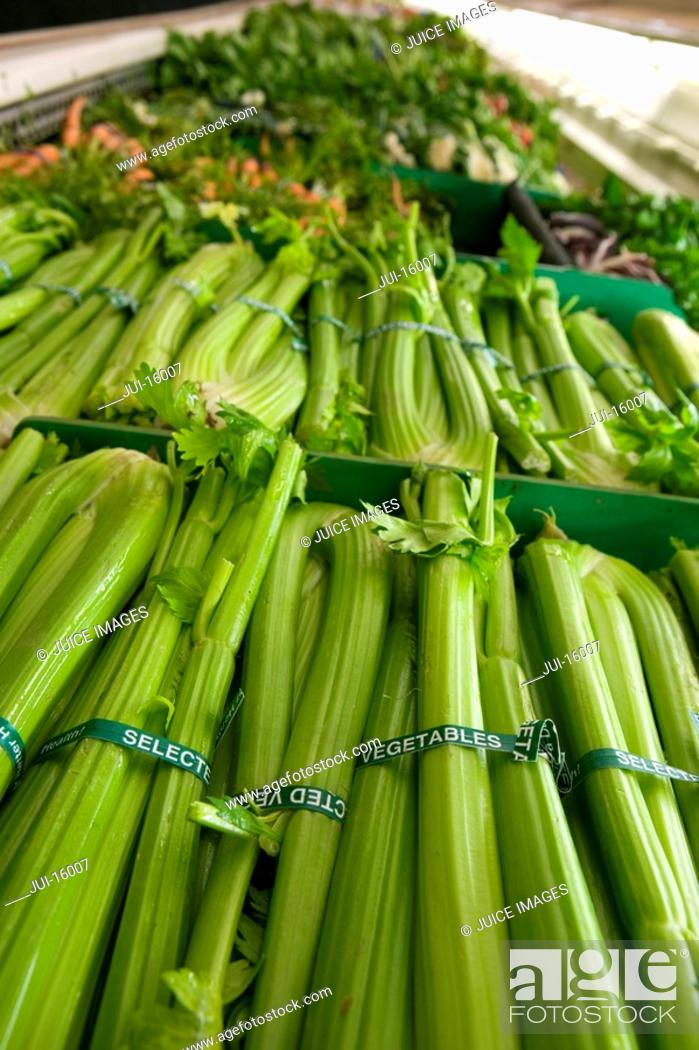Stock Photo: Close up of celery.