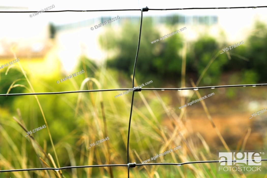 Stock Photo: Wire fence.