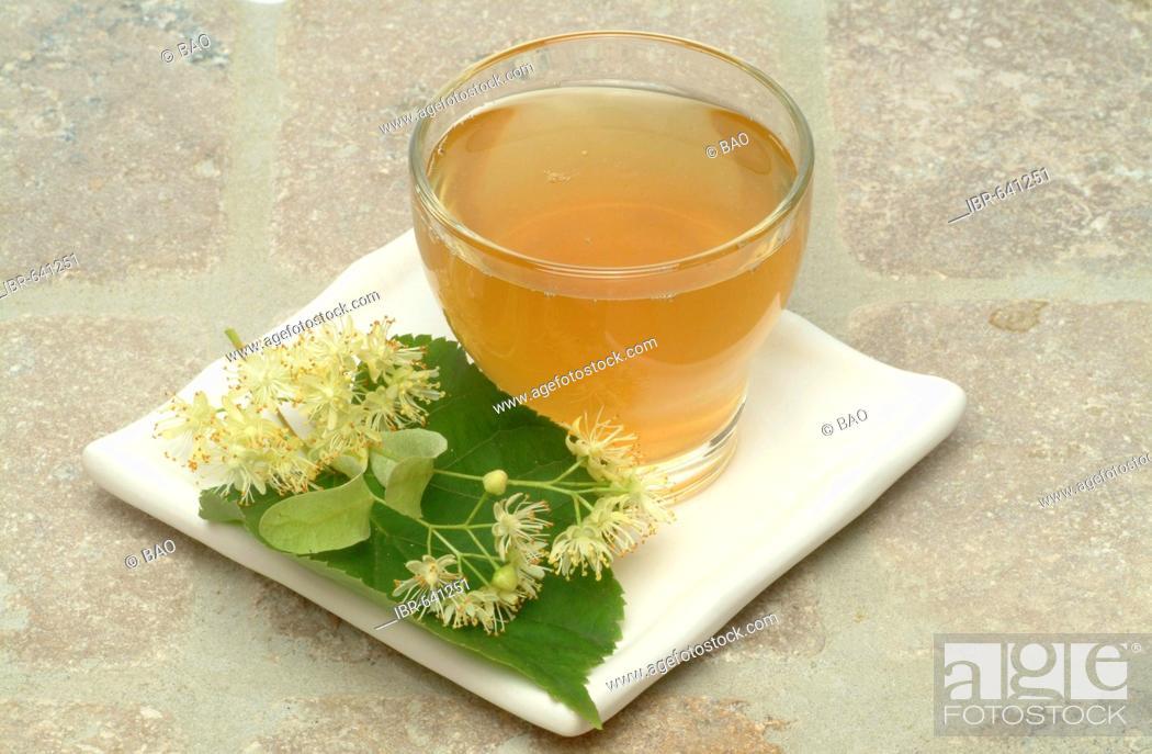 Stock Photo: Small-leaved Lime or Linden (Tilia cordata), herbal tea.