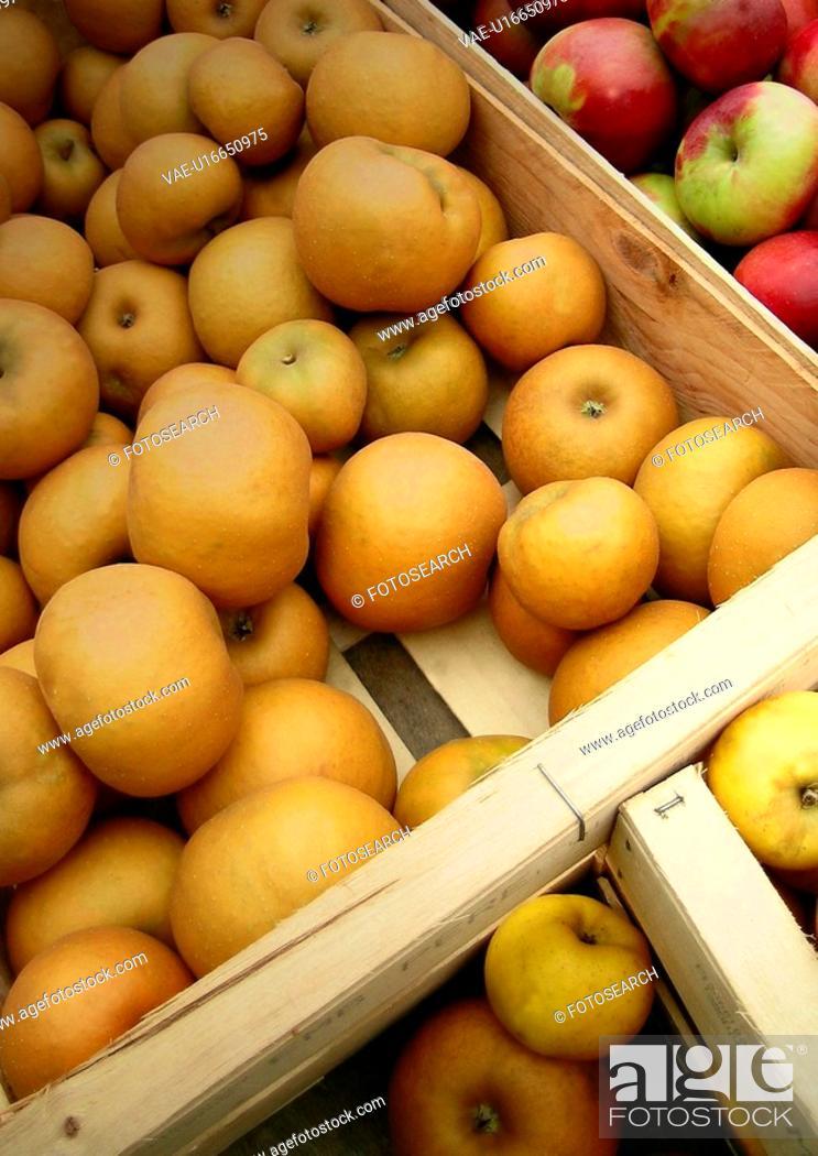 Stock Photo: food, CLOSE, eat, drink, close-up, apple.
