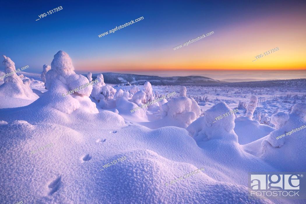 Stock Photo: Szrenica peak, Karkonosze National Park, Poland, Europe.