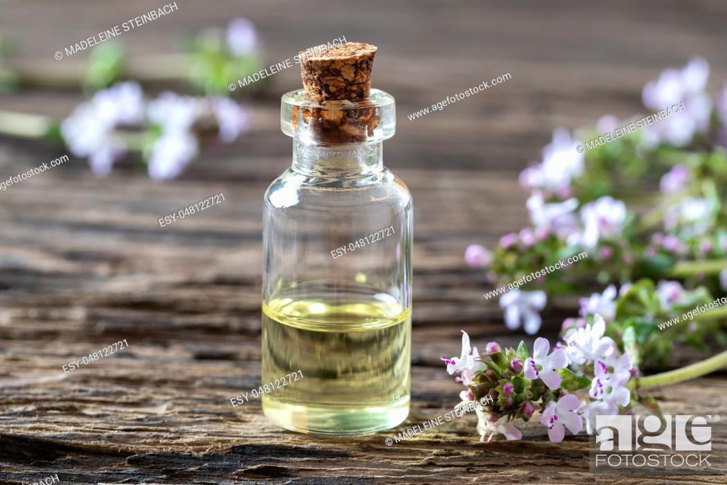 Stock Photo: A bottle of essential oil with fresh blooming thyme twigs.