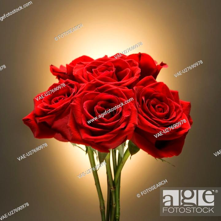 Stock Photo: Bouquet of red roses against glowing golden background.