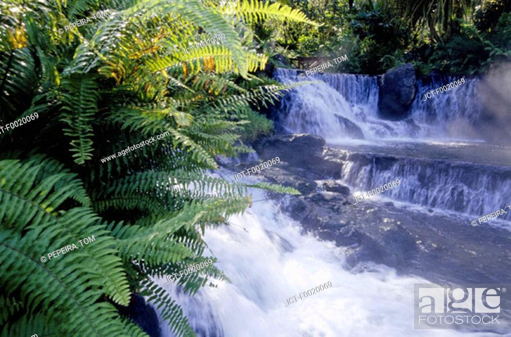 Stock Photo: Costa Rica, Tabacon, hot springs in Arenal Volcano Park.
