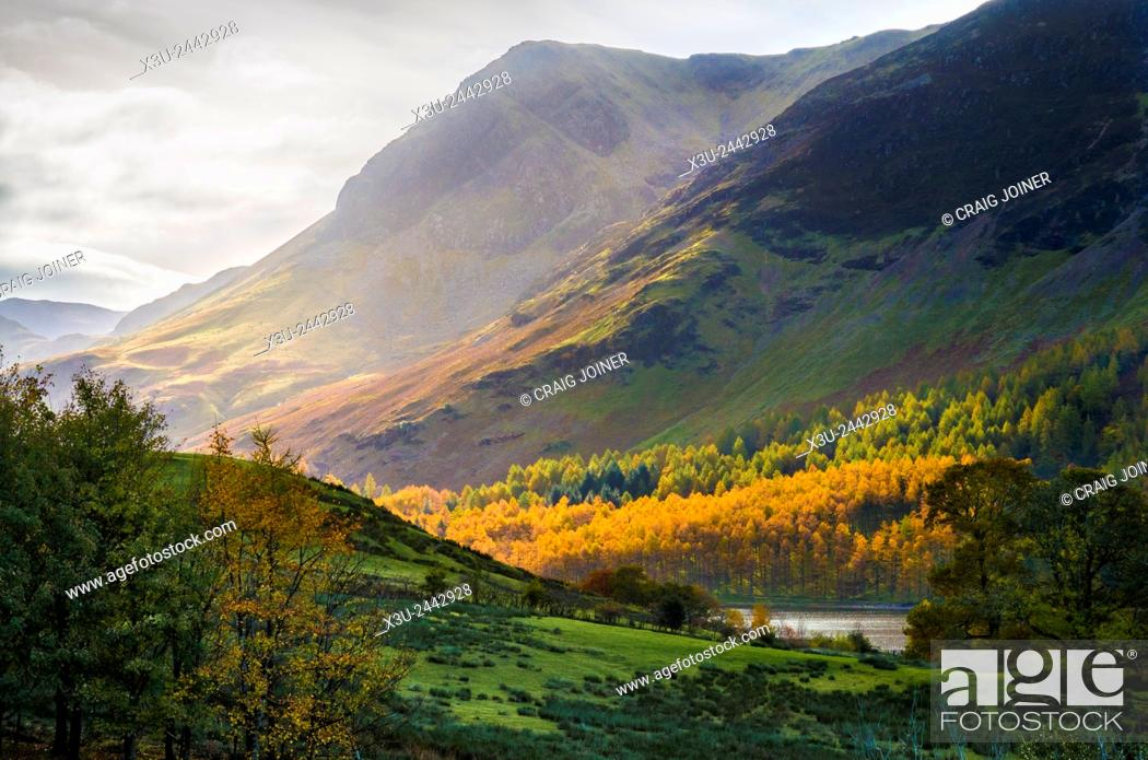 Stock Photo: High Crag, Buttermere Fell and Burtness Wood viewed from the village of Buttermere, Lake District, Cumbria, England.
