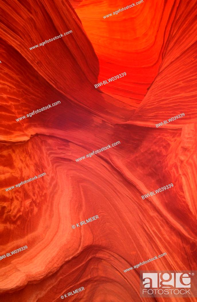 Stock Photo: The Wave, water sculpted walls, USA, Arizona, Paria Canyon Vermillion Cliffs Wilderness Area, Apr.04.