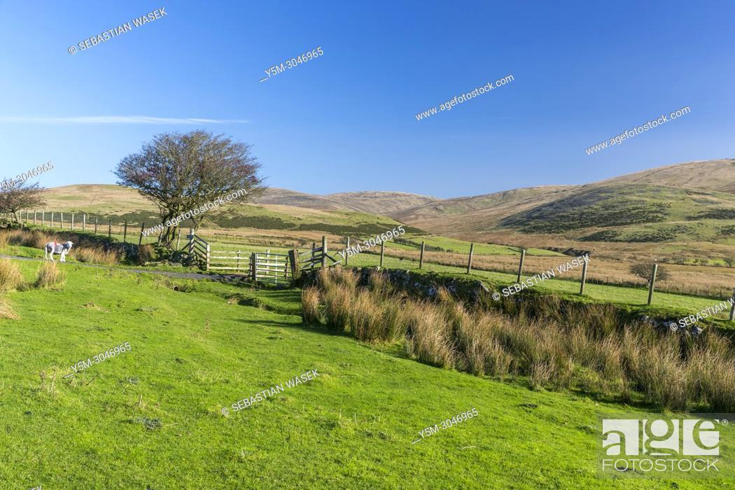 Stock Photo: Kinniside Common, Lake District National Park, Cumbria, England, United Kingdom, Europe.