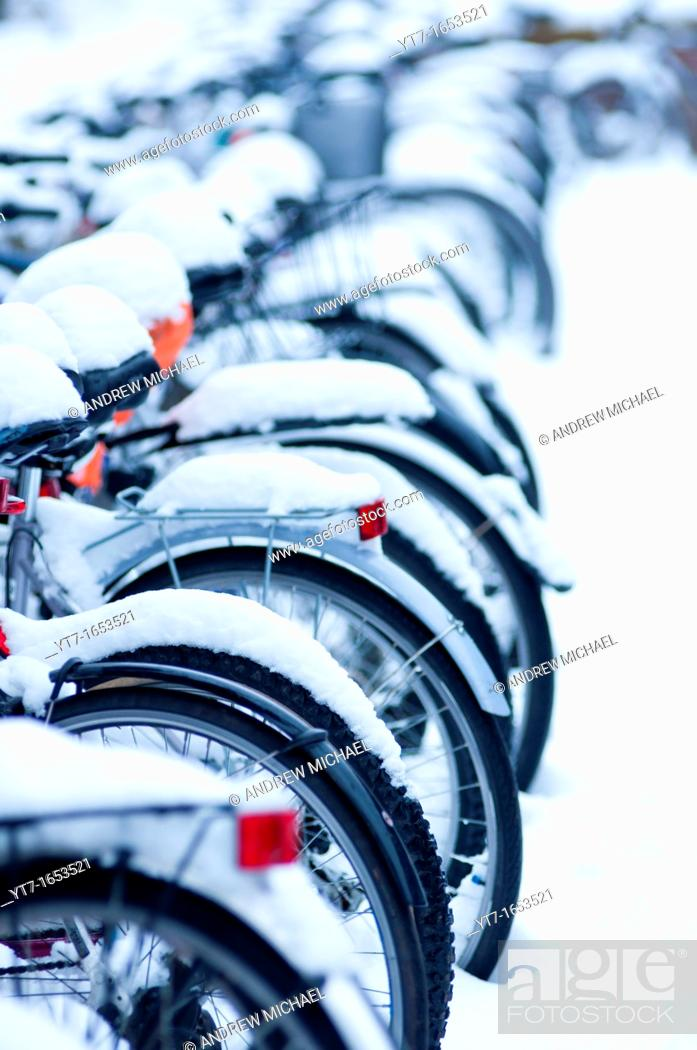 Stock Photo: Many snow covered bicycles outside Fitzwilliams college, Cambridge.