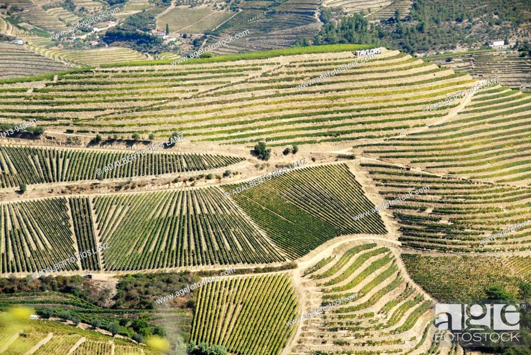 Stock Photo: Hills, Douro river valley, Pinheiro, Portugal.
