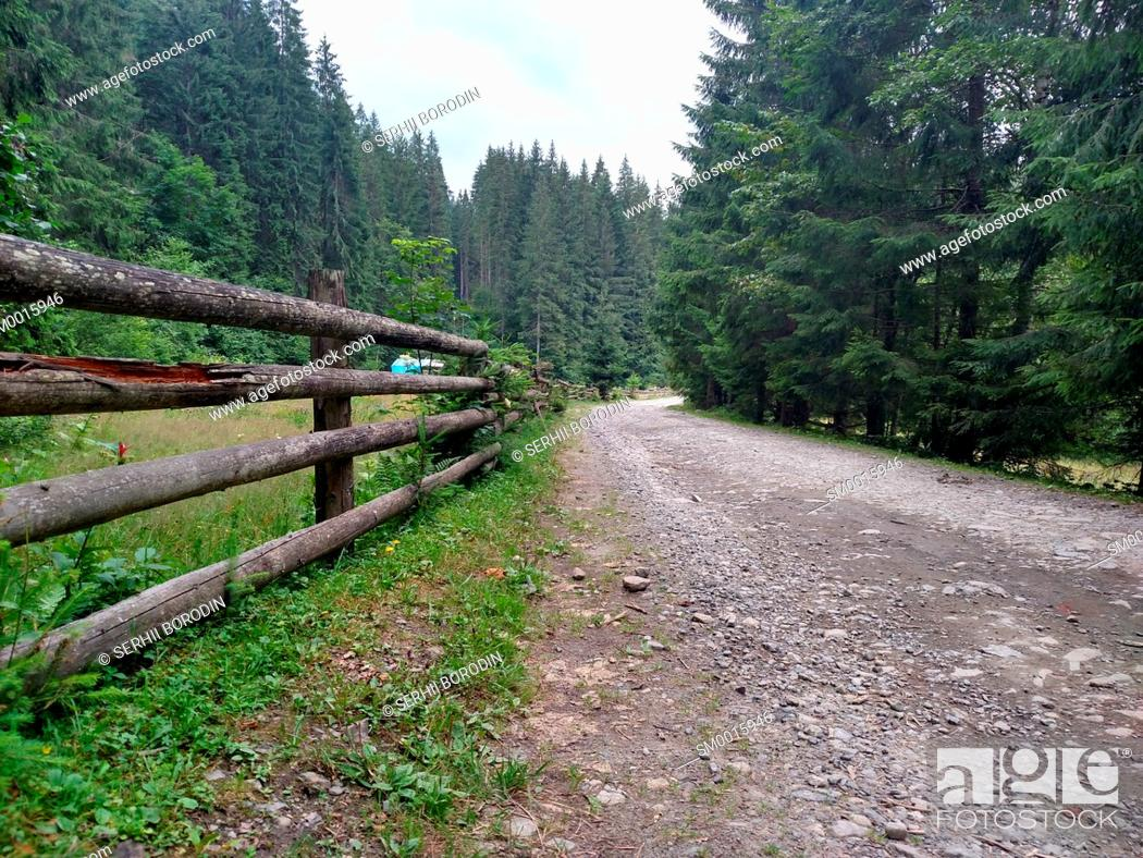Stock Photo: Dirt road near a wooden fence in the mountains Carpathians wild nature village Rural area nature.