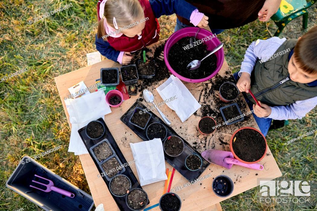 Imagen: Topviewof mother with two kids gardening.