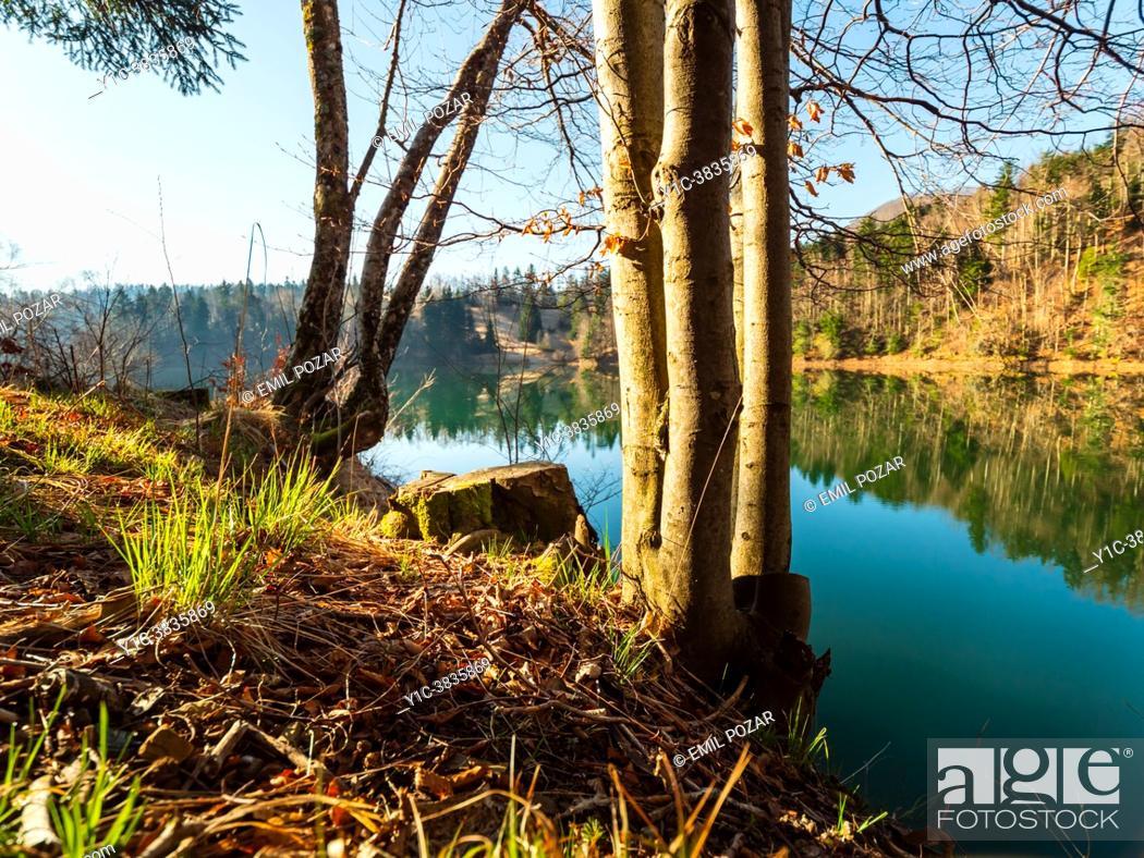 Stock Photo: Morning scenery Lokve lake coastline in Croatia.