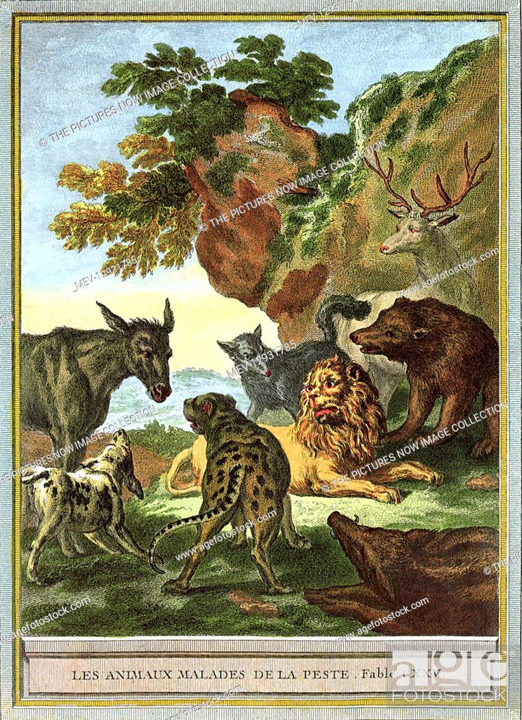 Stock Photo: Sick Animals.