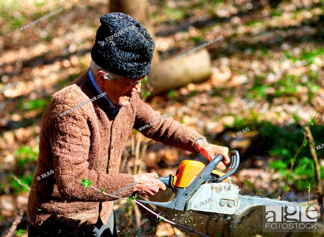 Stock Photo: Old woodcutter working with chainsaw on a beech log.