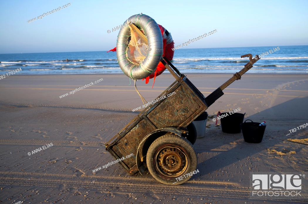 Stock Photo: car trailer and fishing accessories mollusk and shellfish on the beach at Doñana Natural park, Huelva, Andalusia, Spain, Europe.