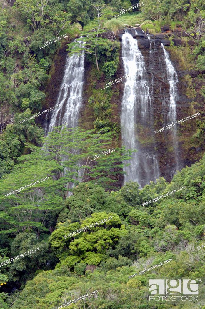 Stock Photo: Opaekaa Falls -Wailua River- on the island of Kauai, Hawaii.