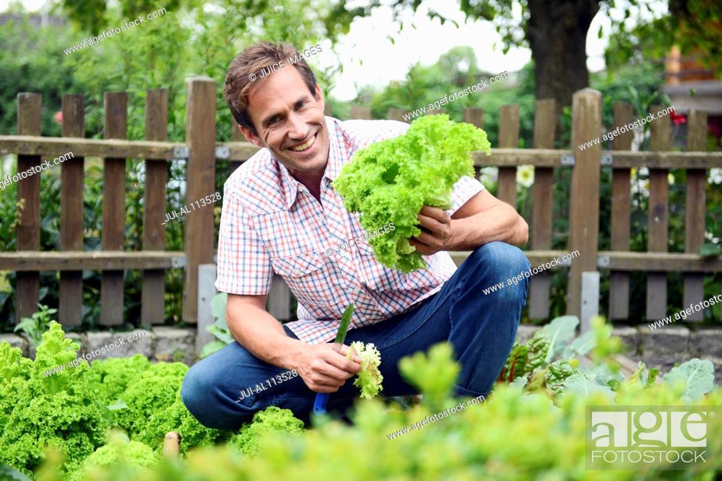 Stock Photo: Man holding vegetables in garden.