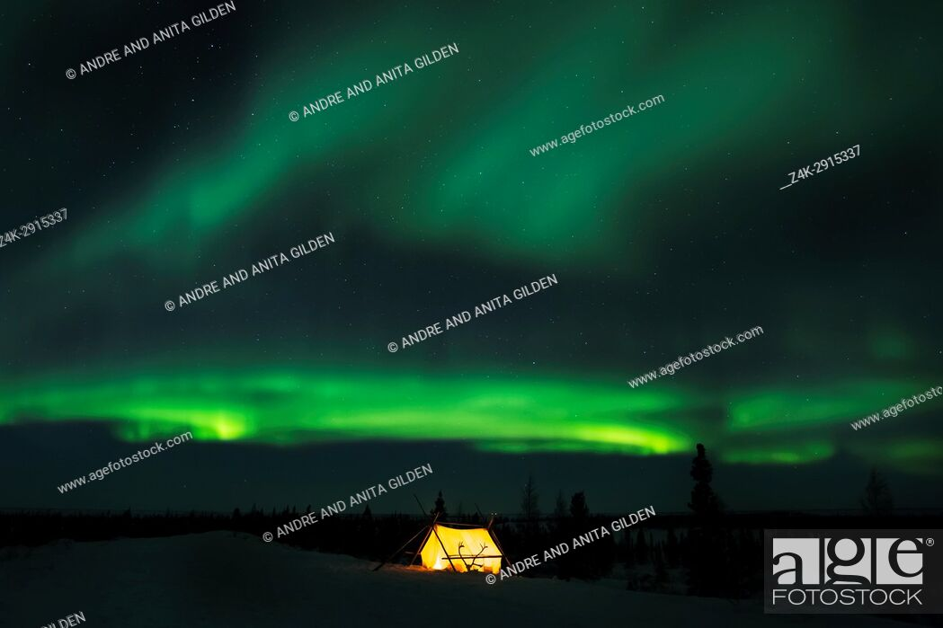 Stock Photo: Nightsky and trappers tent lit up with aurora borealis, northern lights, wapusk national park, Manitoba, Canada.