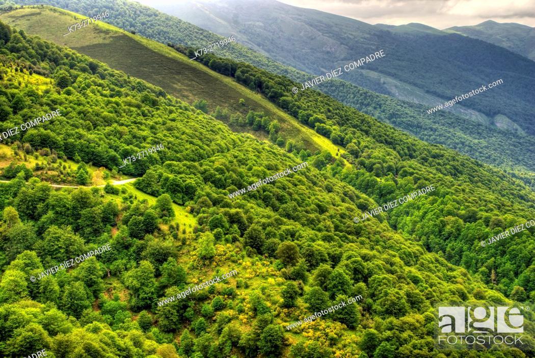 Stock Photo: Palombera Mountain Pass. Saja-Besaya Natural Park. Cantabria. Spain.