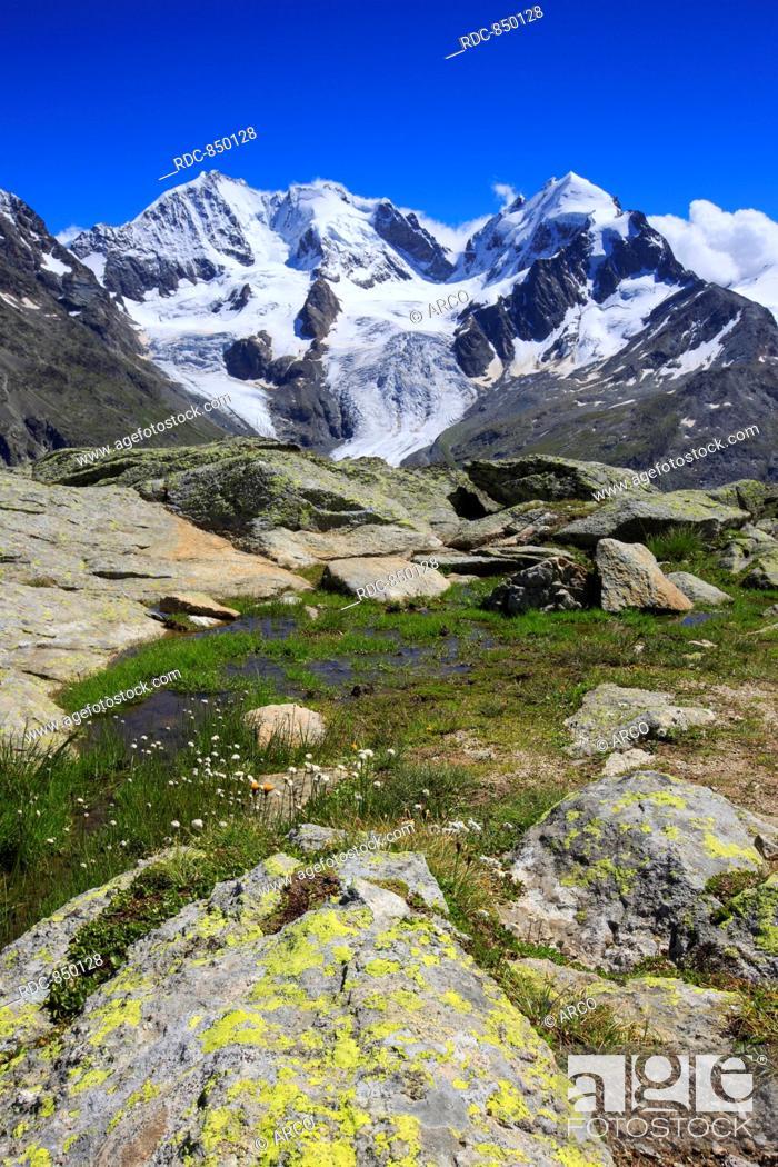 Imagen: Piz Tschierva, 3546 m, Piz Bernina, 4049 m, Biancograt, Piz Roseg, 3937 m, Graubuenden, Schweiz.
