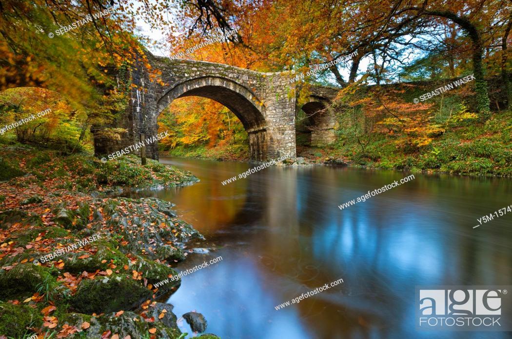 Imagen: Holne Bridge over the River Dart, Dartmoor National Park, Devon, Southwest England, Europe.