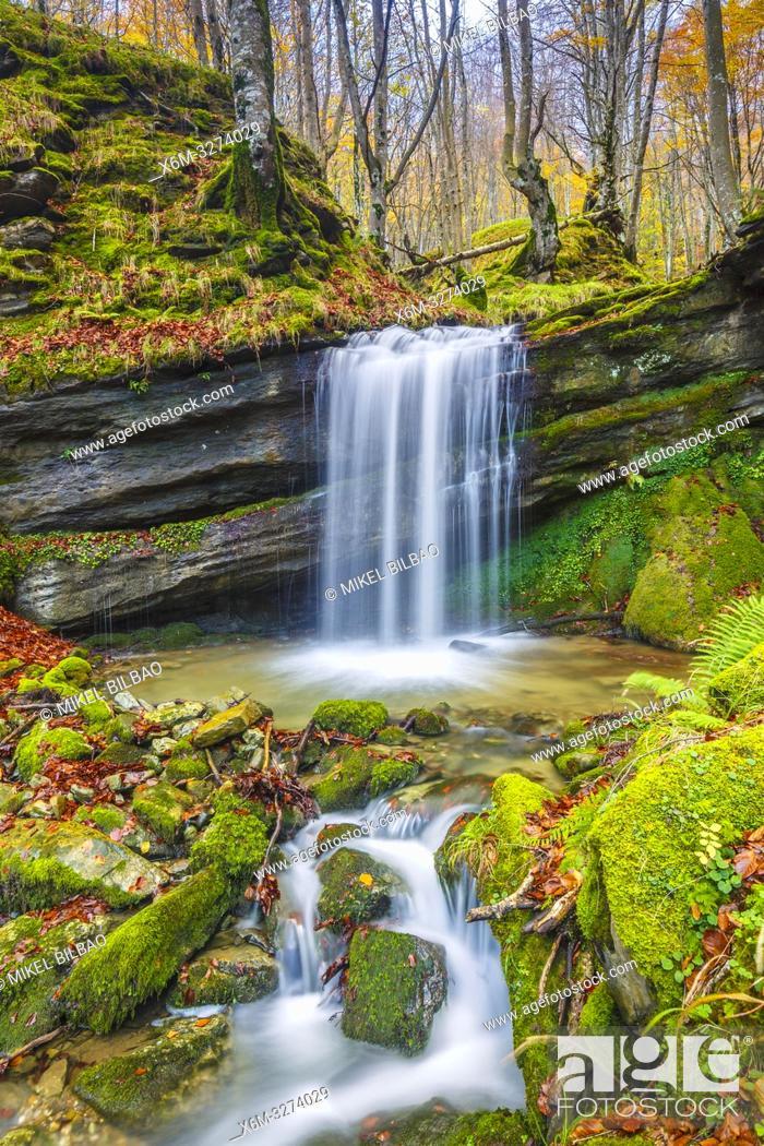Stock Photo: Waterfall in a beechwood. Portillo de la Sia Pass. Cantabria, Spain, Europe.