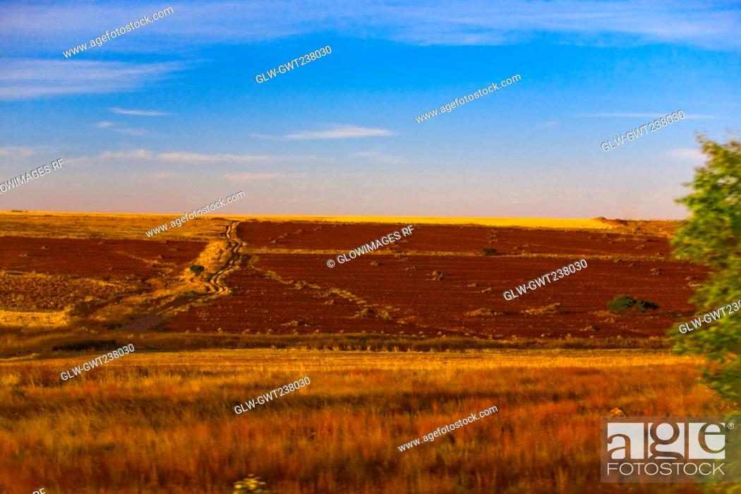 Stock Photo: Panoramic view of a landscape, Zacatecas State, Mexico.