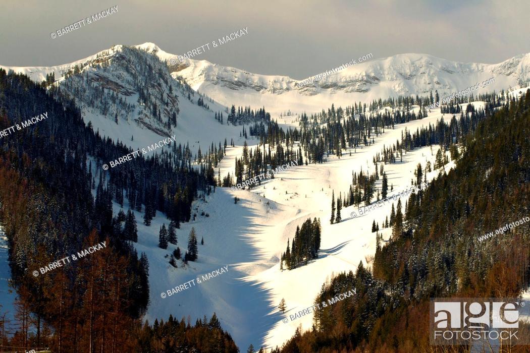Stock Photo: Lizard Rocky Mountain Range, Fernie, British Columbia, Canada.